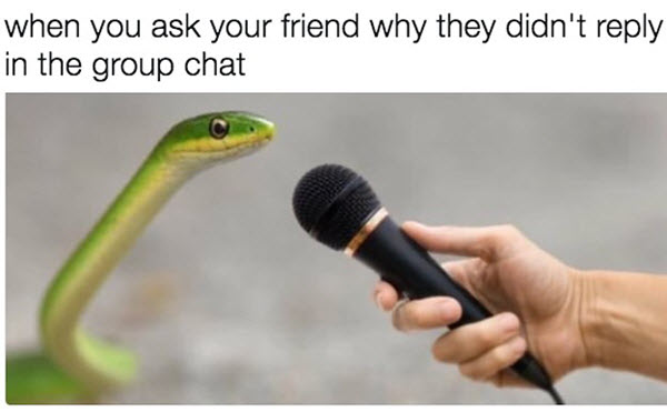 group chat did not reply meme