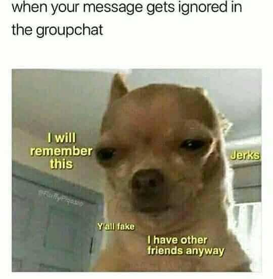 group chat gets ignored meme