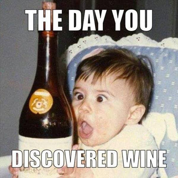 happy birthday wine discovered meme