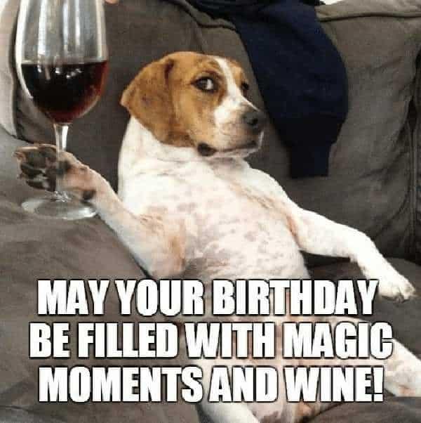 happy birthday wine filled meme