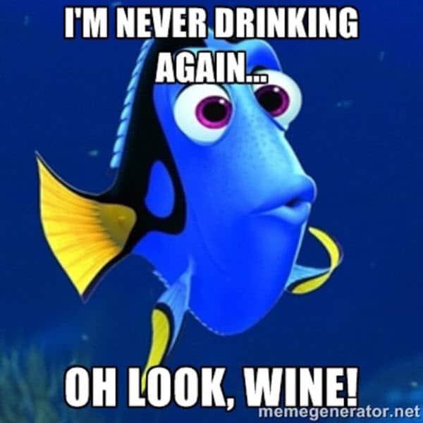 happy birthday wine never drinking again meme