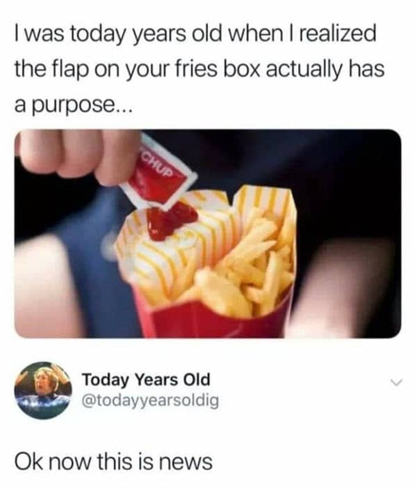 i was today years old fries box memes