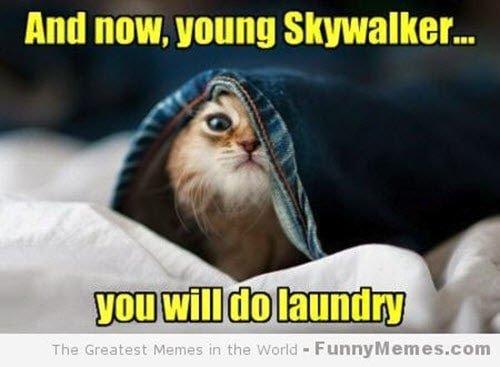 laundry young skywalker meme