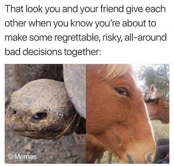 side eye bad decisions memes