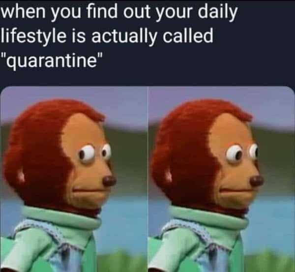 side eye quarantine memes