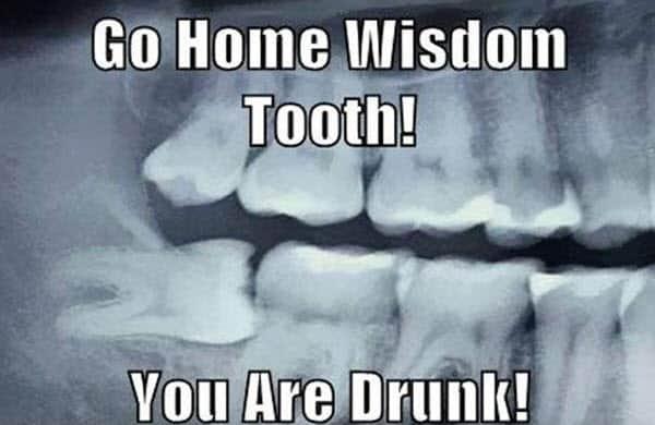 wisdom teeth go home meme