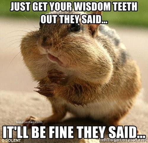 wisdom teeth they said meme