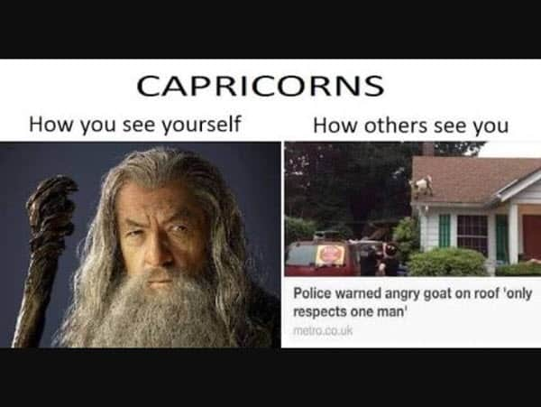 capricorn how you see yourself meme