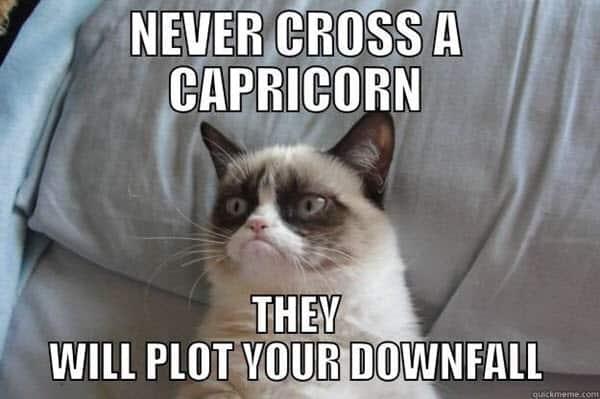 capricorn never cross meme