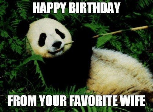 happy birthday husband from your favorite wife meme