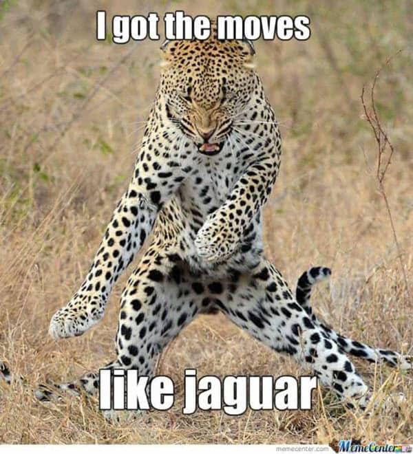 happy dance i got the moves meme