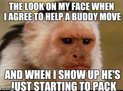 moving the look on my face meme