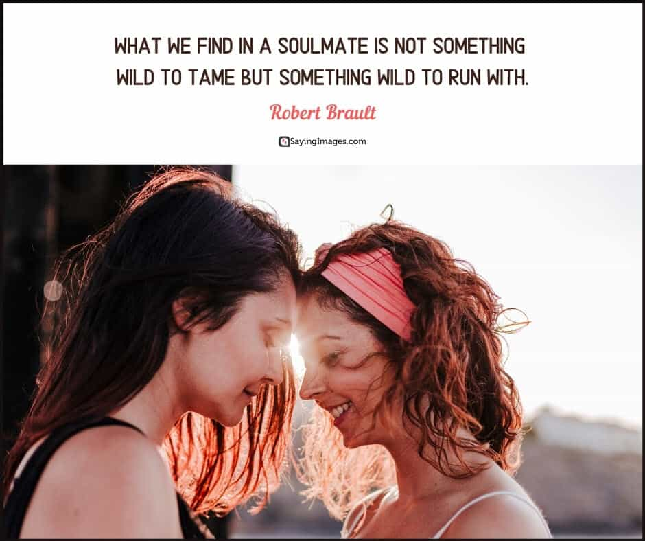 soulmate tame quotes