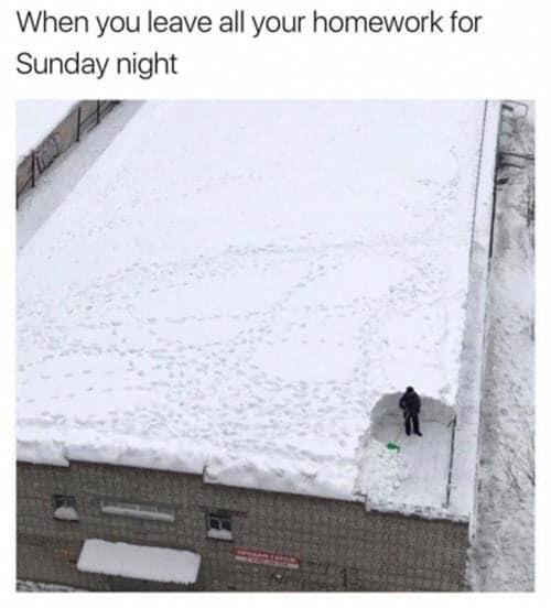 sunday night leave all homework meme
