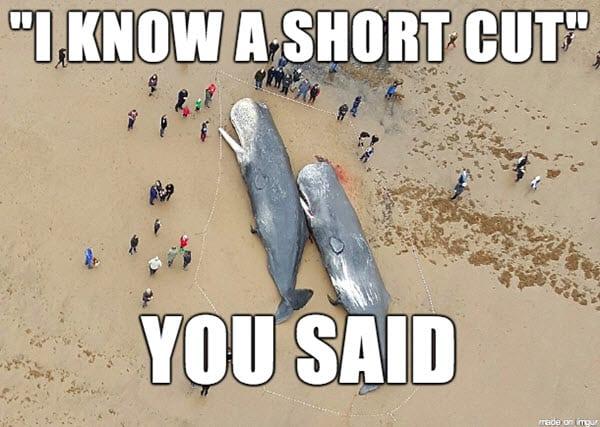 bad friend short cut meme