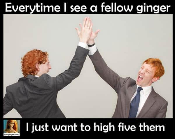 fellow ginger meme