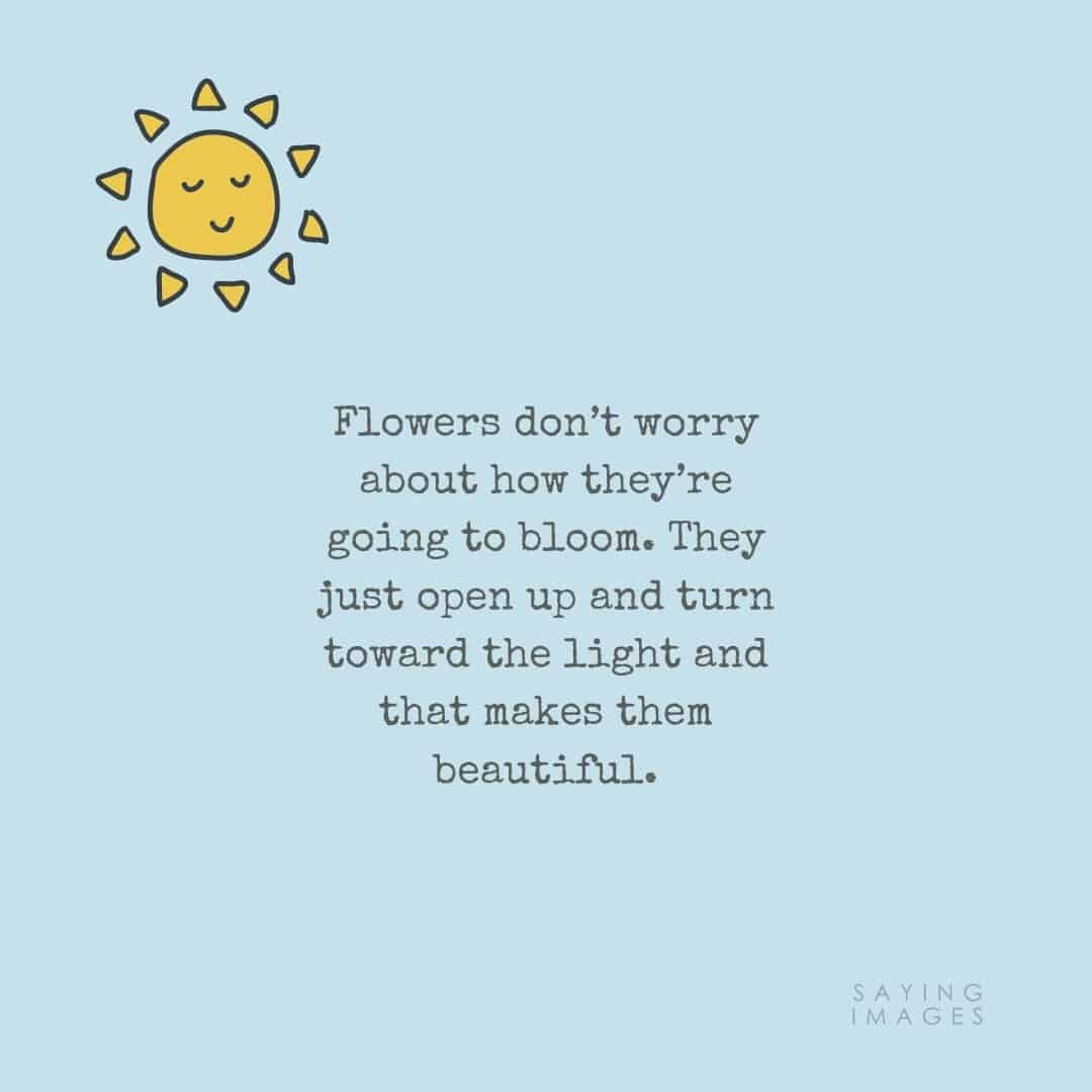 flower beautiful quotes