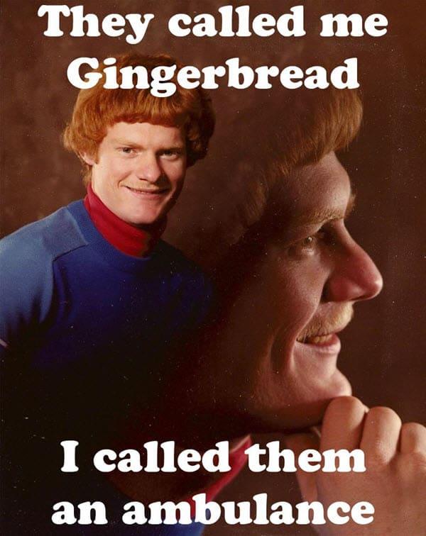 ginger gingerbread meme