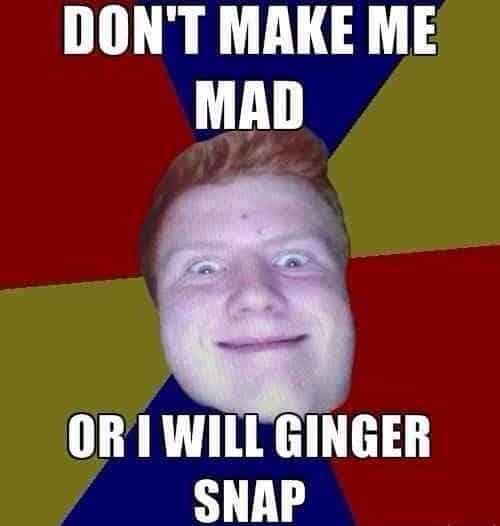 ginger snap meme