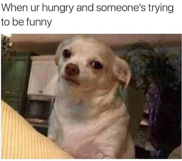 hungry trying to be funny meme