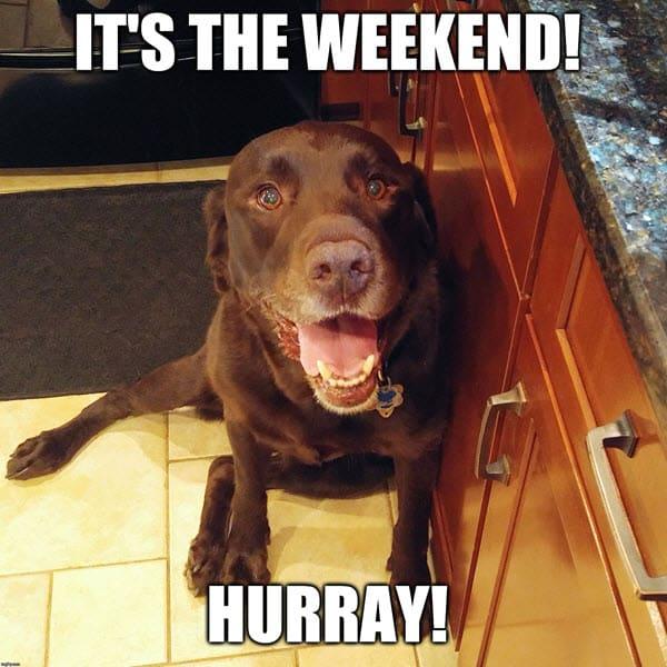 its the weekend hurray meme