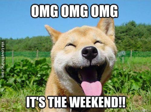 its the weekend omg meme
