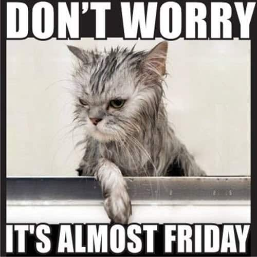 almost friday dont worry meme