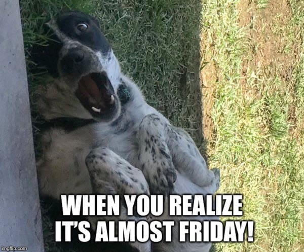 almost friday when you realize meme