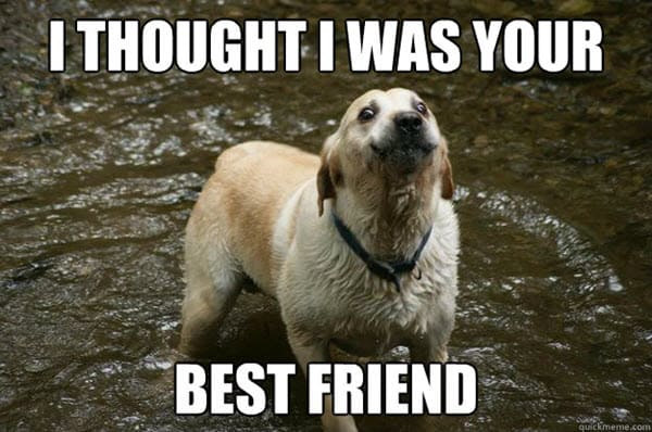 best friend i thought memes
