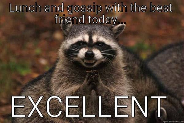 best friend lunch and gossip memes
