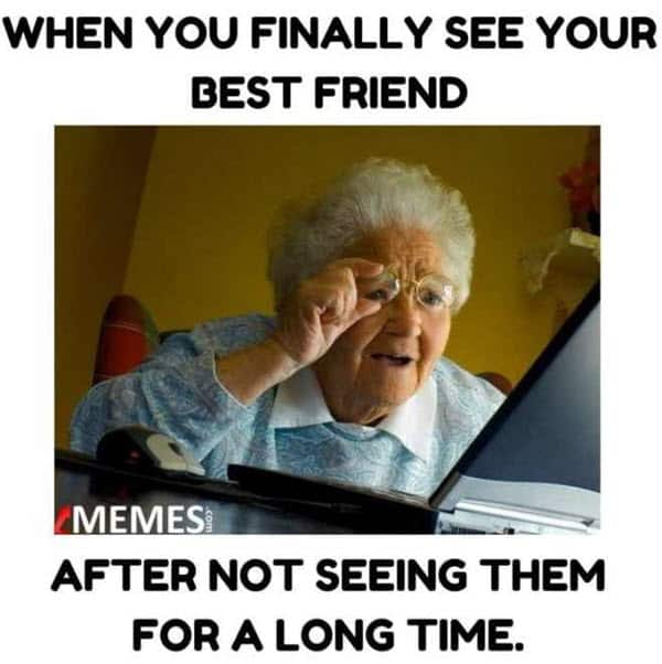 best friend see your memes