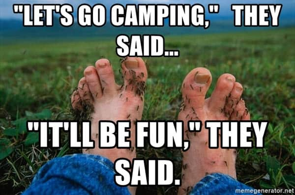 camping it wil be fun memes