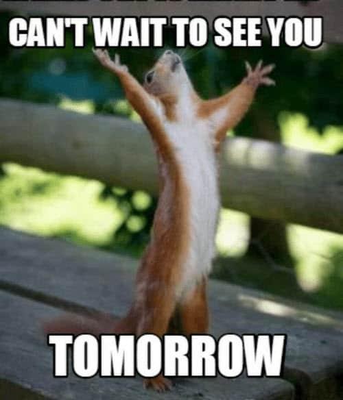 can t wait tomorrow meme