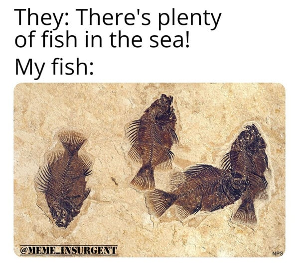 dating plenty of fish in the sea memes