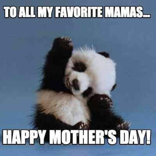 happy mothers day to all meme