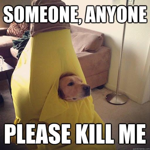 kill me someone anyone meme