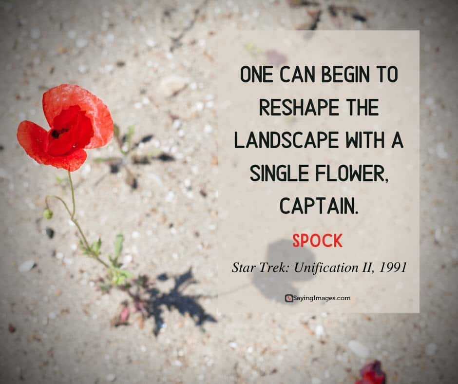 spock flower quotes