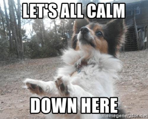 calm down lets meme
