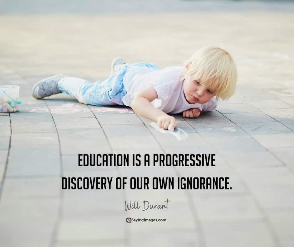 education ignorance quotes