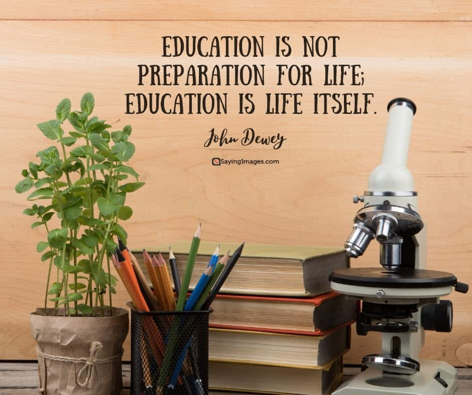 education life quotes