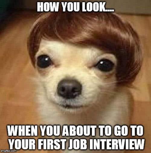 job interview how you look meme