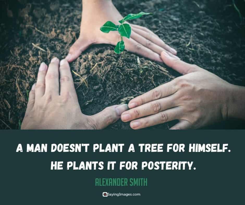 tree posterity quotes