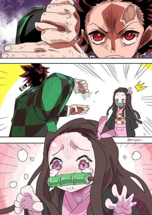 demon slayer memes tanjiro tricks nezuko