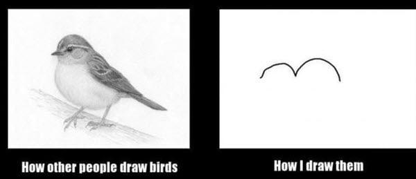 drawing bird meme