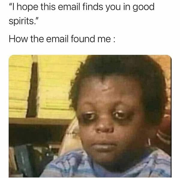 hope this email finds you well good spirits memes