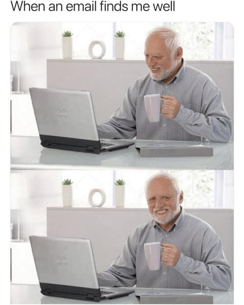hope this email finds you well wholesome harold memes