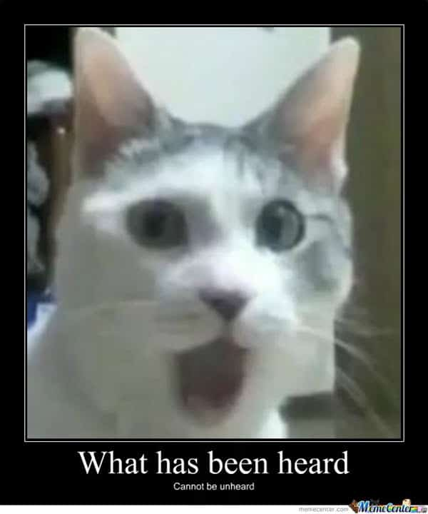 surprised face what has been heard meme