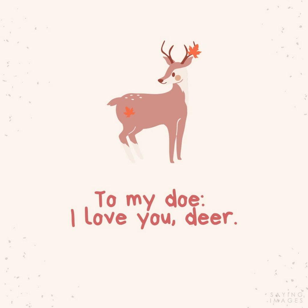 anniversary doe deer quotes