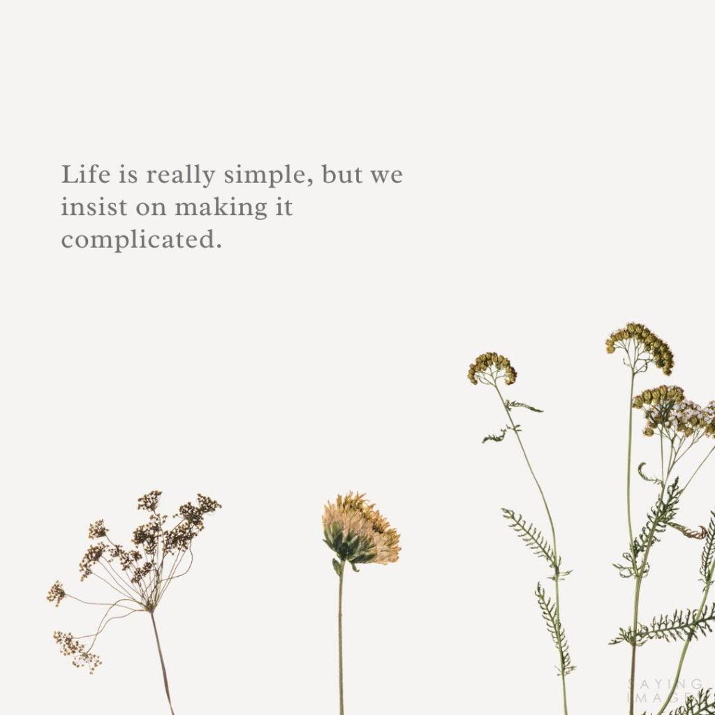 confucius life quotes
