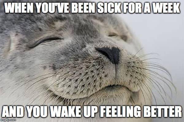 feel better sick meme